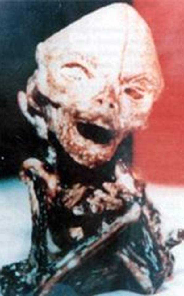 Загадочная история про Алешеньку инопланетянина