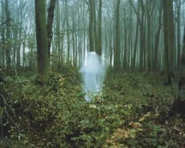 Привидения и их типы