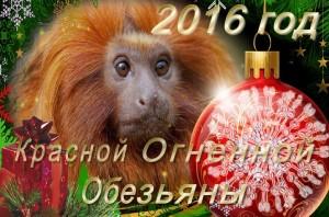 astroprognoz-dlya-ukrainy-na-2016-god-ot-izvestnyh-astrologov